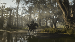 Red Dead Redemption 2_20210223013446.png