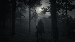 Red Dead Redemption 2_20210225030133.png