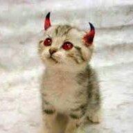 lil devils x