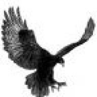 BlackEagle95