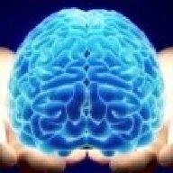 Living_Brain