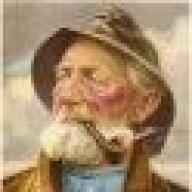 Festus Moonbear