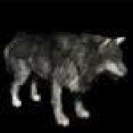 WolfThomas