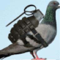 Pigeon_Grenade
