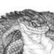 SerpentStare