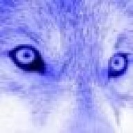 Wolfinton