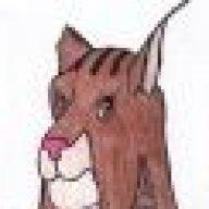 Lynxan