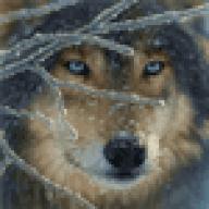 tabriaswolfe
