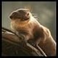 TheOtter
