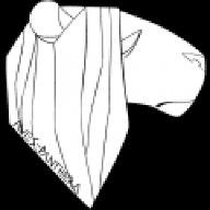 saluraropicrusa